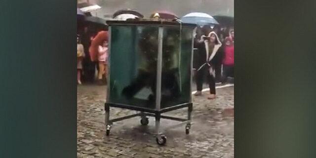 Su dolu kafesten çıkmaya çalışan illüzyonist boğulma tehlikesi atlattı