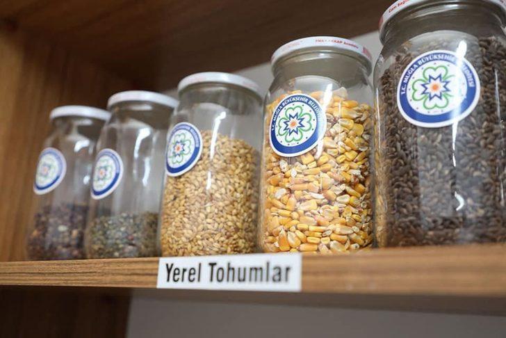 Muğla'nın yöresel tohumları koruma altında