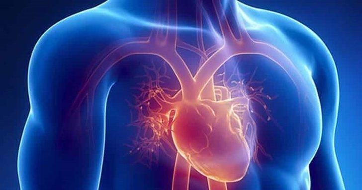 Nabız sayısı kaç olmalıdır? Kalp atışının hızlı olması hangi hastalıkların habercisidir?