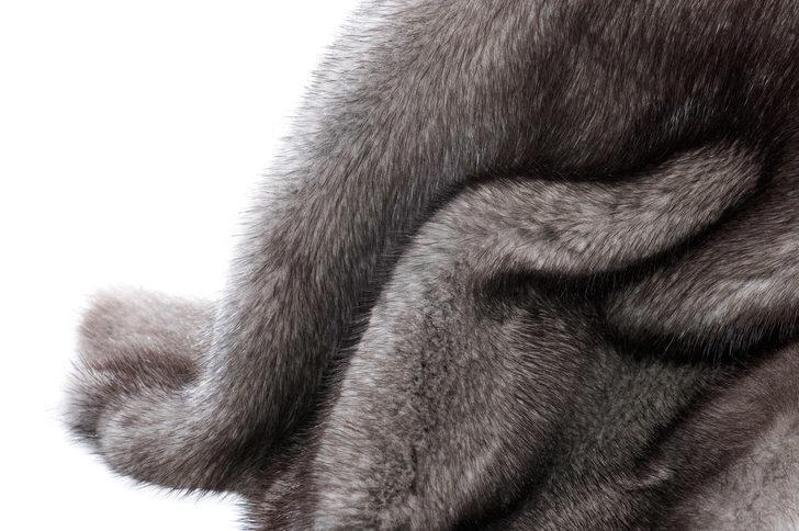 Chanel moda ürünlerinde artık egzotik hayvan derisi kullanmayacak