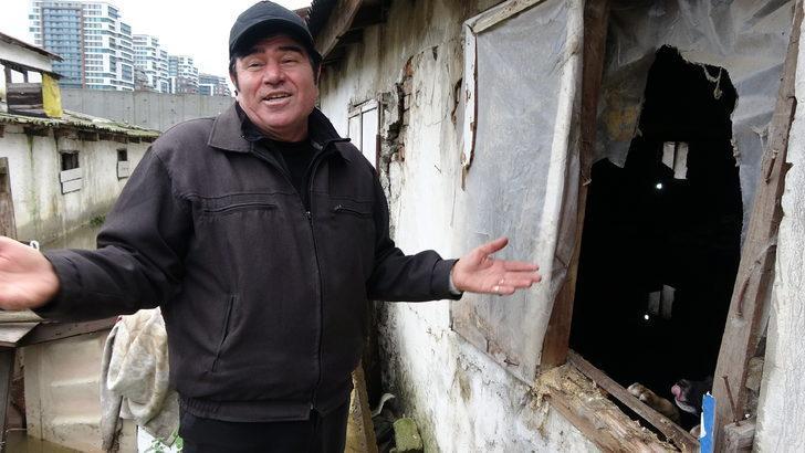 - Kağıthane'de eski mandırayı su bastı, kümes hayvanları telef oldu