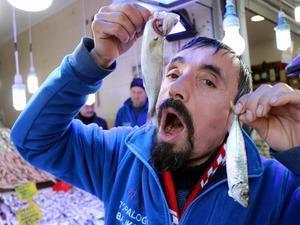Samsunlu balıkçılar, geçen sene kilosu 30 lira olan çinekopun, bu seneki bolluk nedeniyle 15 liradan satıldığını söyledi.