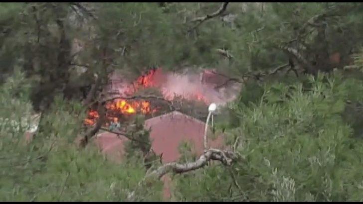Ek fotoğraflar // Büyükada'da ormanlık alanda yangın