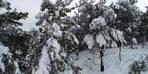 Çanakkale'de kar güzelliği havadan görüntülendi