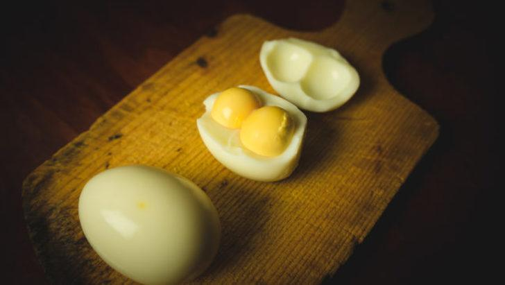 Çift sarılı yumurta nasıl oluşur?