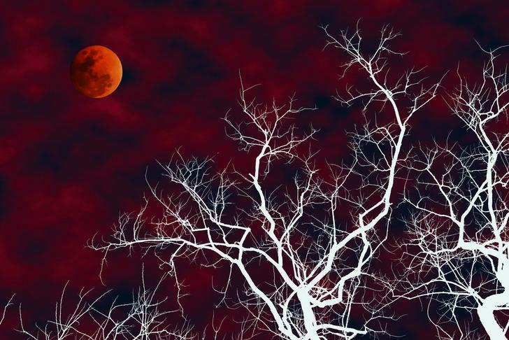21 Ocak 2019 Kanlı Ay Tutulmasının Burçlara Etkisi