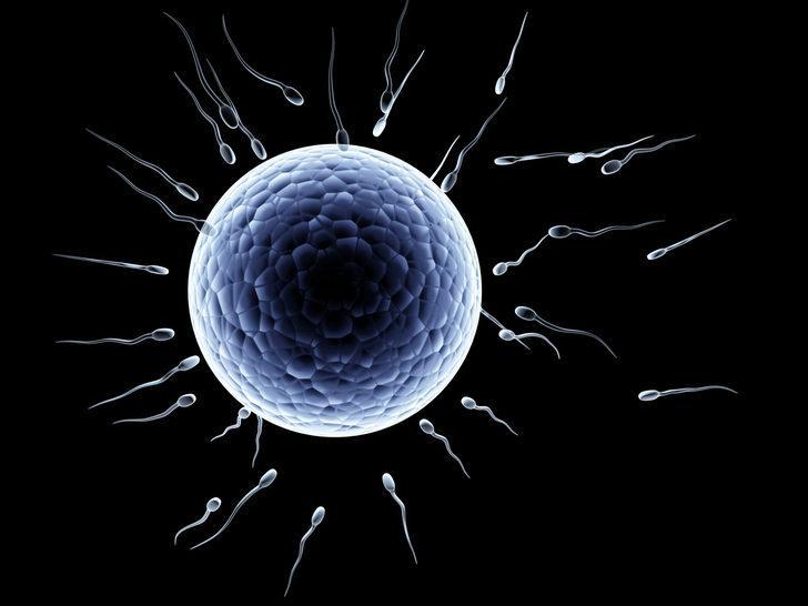 Dünya bunu konuşuyor! Kadınlar sperm bağışçılarına para ödüyor