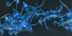 Kör eden parazit: Toksoplazma