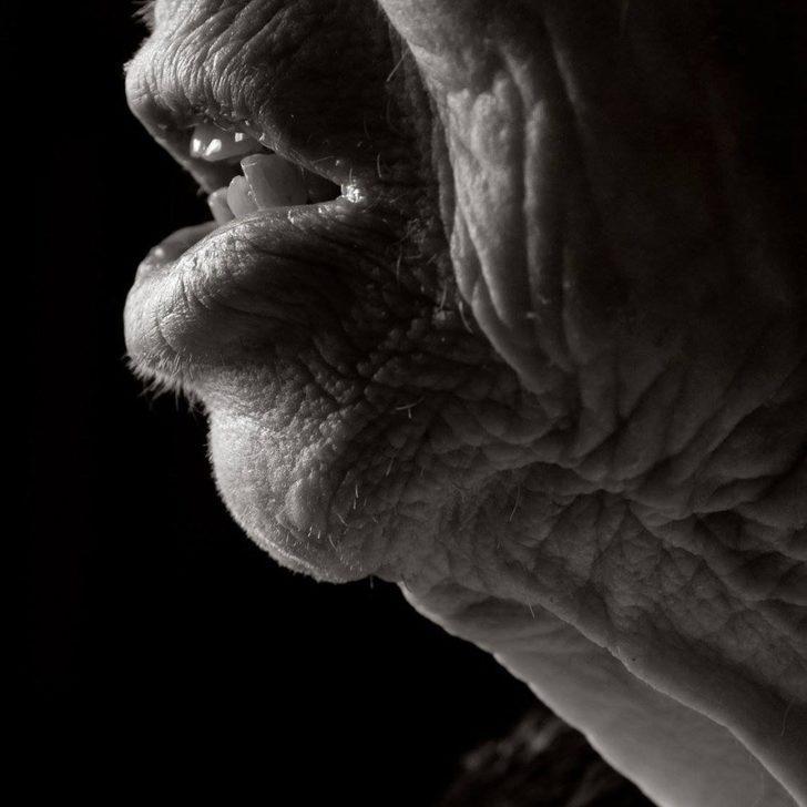 Merak edenler için: 100 yaşından sonra insan nasıl görünür?