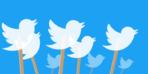 Twitter zarardan kara döndü