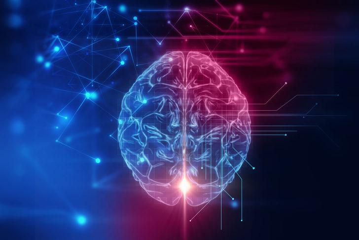 Sakin bir hayat, Alzheimer riskini artırıyor