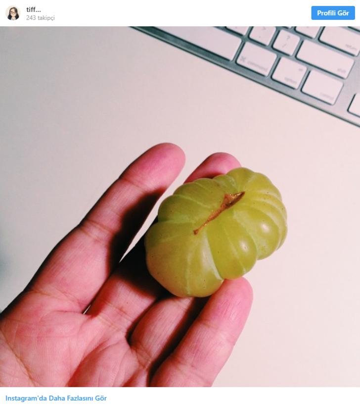 Hayır, bu yeşil bir domates değil. Bu gördüğünüz sadece üzüm