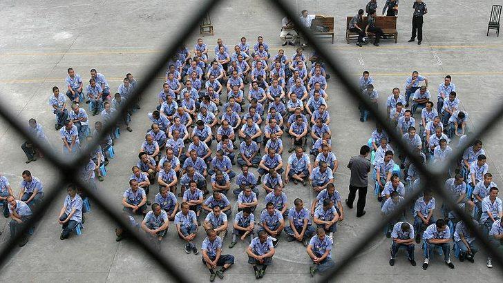 'İdam mahkumlarının organları zorla alınarak kullanılıyor'