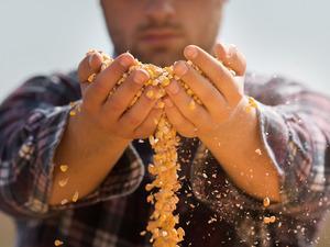 Çiftçinin ürünü tek elde toplanıp pazarlanacak