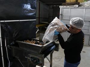 Aydın'da, devletten aldığı destekle incir işleme tesisi kuran 34 yaşındaki gıda mühendisi Fatma Asena Yazar, 3 yılda ihracat yapmaya başladı.Yılda 500 bin liralık ciroya ulaşan tesisten ilk ihracat Güney Afrika Cumhuriyeti'ne yapıldı.