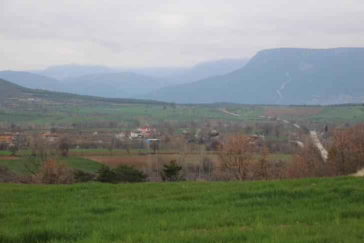 Türkiye'nin kenevir üretim merkezi seçilen ilçede arazilere talep arttı