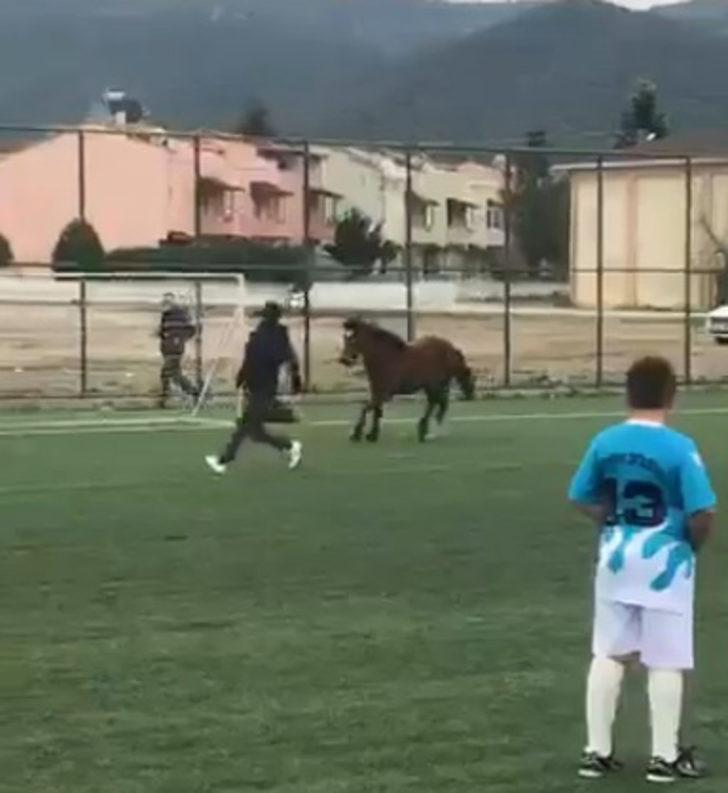 Bursa'da maç sırasında sahaya at girdi