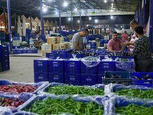 Rekabet Kurumu'ndan sebze ve meyve fiyatlarıyla ilgili önemli hamle