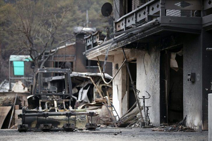 Güney Kore'de orman yangını kontrol altına alındı, 478 ev yandı