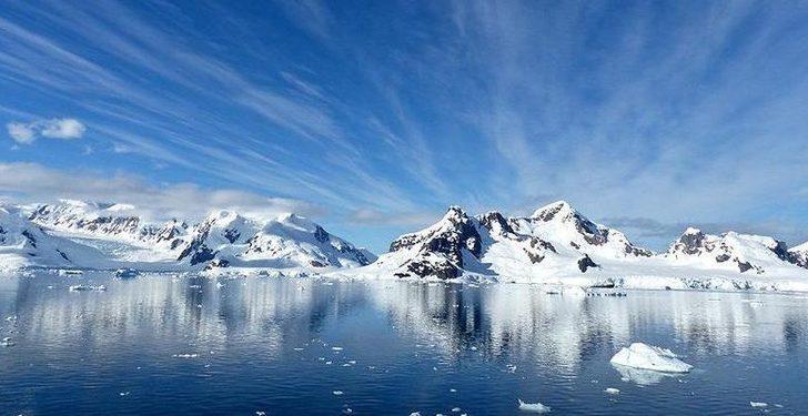 Antarktika'nın daha önce ağaçlarla kaplı olduğunu biliyor muydunuz?