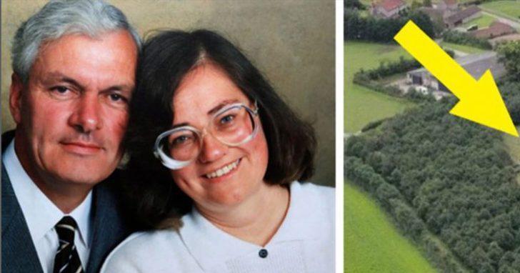 Ölen eşi için 6 bin ağaç dikti! Ayrıntı yıllar sonra fark edildi
