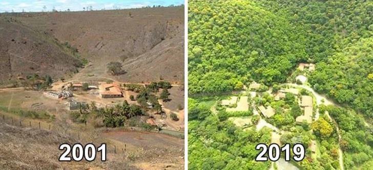 20 yılda 2 milyon ağaç diktiler! Kurak bölgenin son hali şoke edici