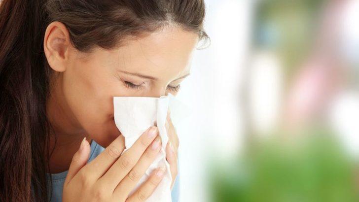 Bahar alerjisinin nedenleri
