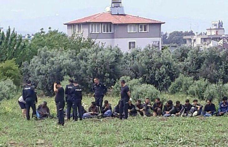 Hatay'da 26 kaçak göçmen yakalandı
