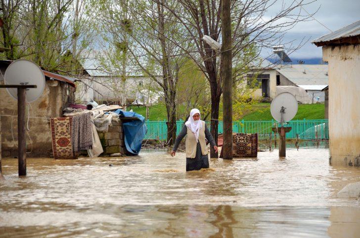 Muş'ta ev ve ahırlar su altında kaldı