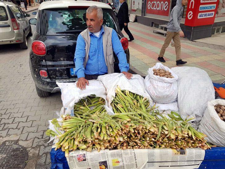 Işgın bitkisi köylülerin geçim kaynağı