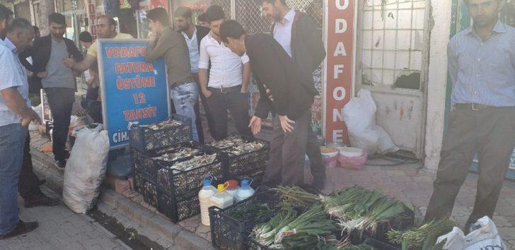 Yayladan topladıkları bitkileri satarak geçimlerini sağlıyorlar