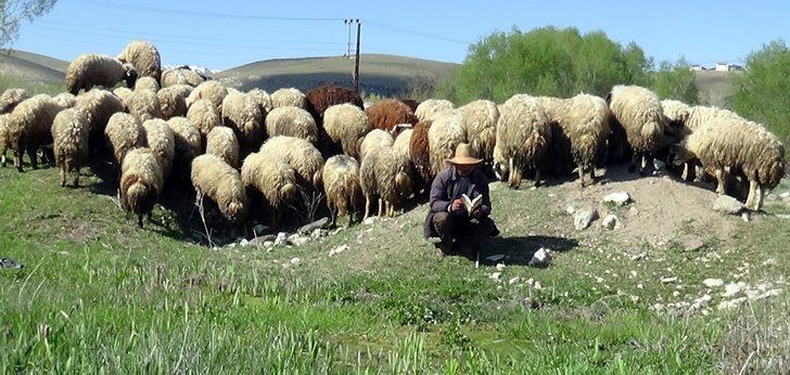 Kırgız çoban günde bir kitap bitiriyor