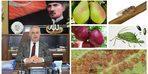 Müdür Görentaş, meyve üreticilerini uyardı