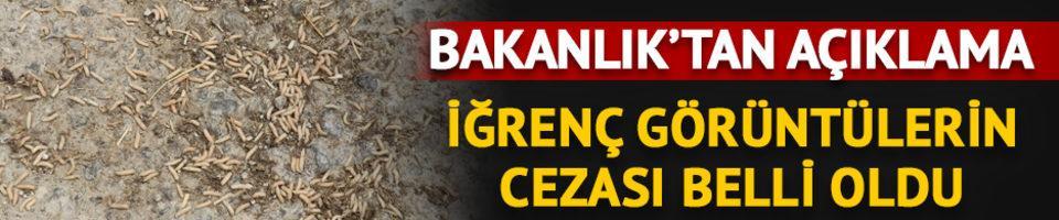 Tarım ve Orman Bakanlığı'ndan 'kaçak sakatat' açıklaması