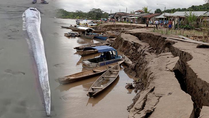 Peru'da şaşırtan görüntü! Daha önce de olmuştu
