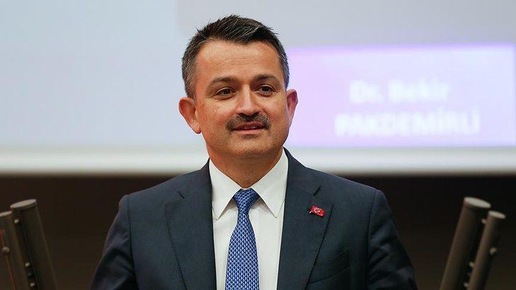 Bakan açıkladı: Hedef 2023'e kadar 7 milyar fidan