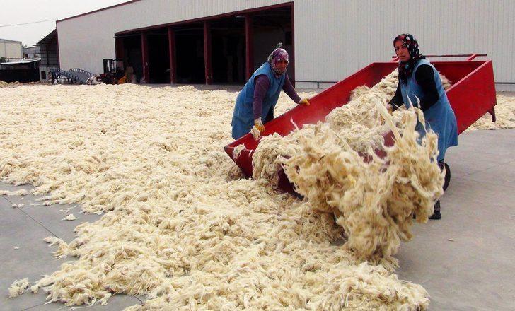 İşlediği koyun yünlerini dünyaya satıyor