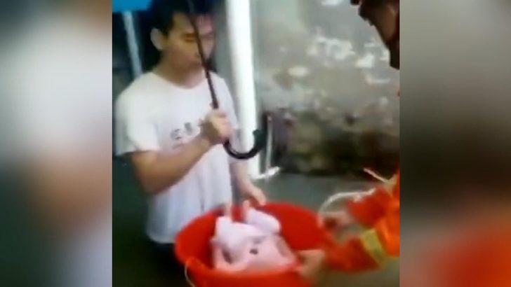 5 aylık bebek selin bastığı binadan böyle kurtarıldı…