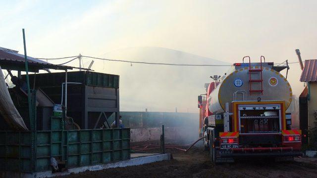 Muğla'da yağ üretim tesisinde yangın