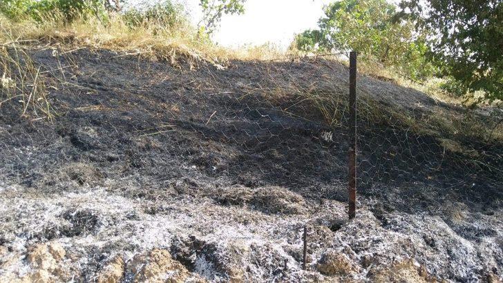 Çocukların attığı maytap yangına neden oldu