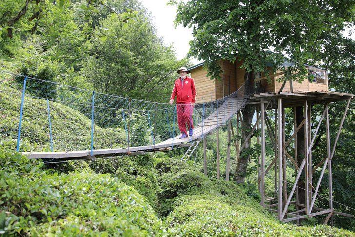Ağaç gövdesine yaptığı eve asma köprü ile ulaşıyor
