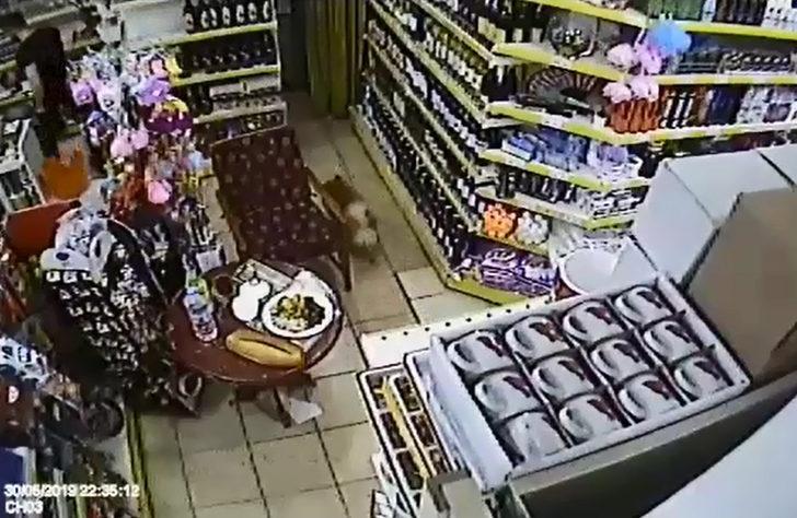 Rus turist markette köpeğe tekme, sahibine yumruk attı