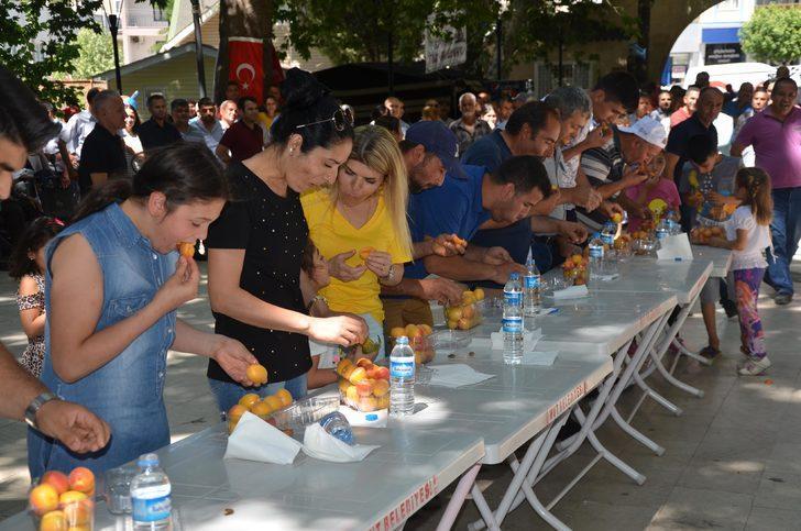 Mut Kayısı Festivali başladı