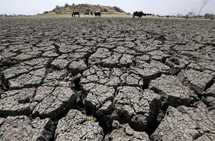5 yılda 4 bin 700 çiftçi intihar etti!