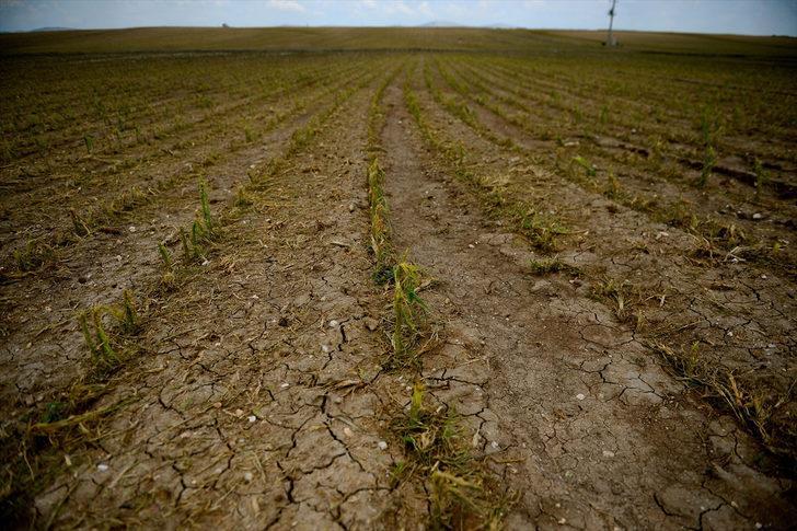 Eskişehir'de ekili arazileri sağanak ve dolu vurdu