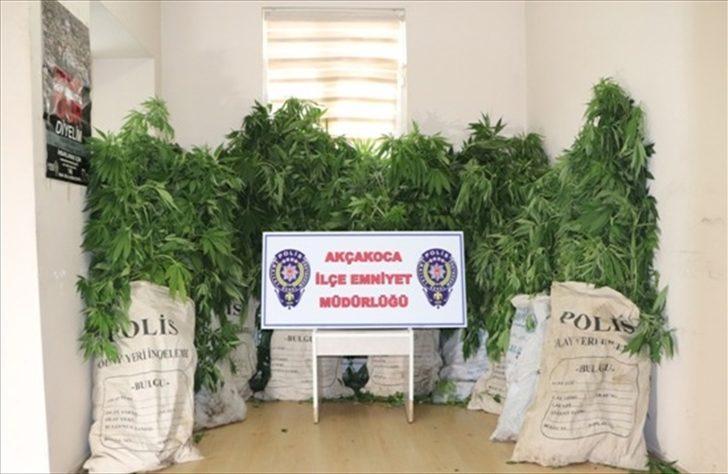 Düzce'deki uyuşturucu operasyonu
