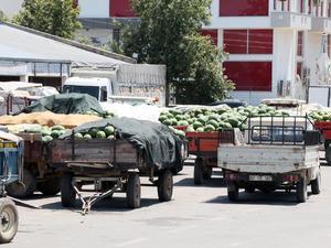 Antalya'da karpuz 30 kuruşa alıcı bulamıyor