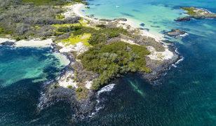 'Cennet ada' orduya açıldı! Çevreciler ayaklandı