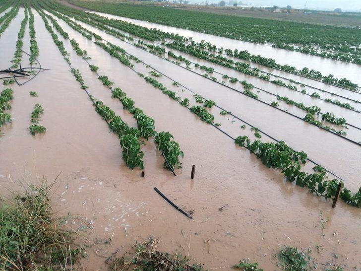Yenişehir Ovası'nda 70 bin dönüm ekili alan 'su' altında kaldı