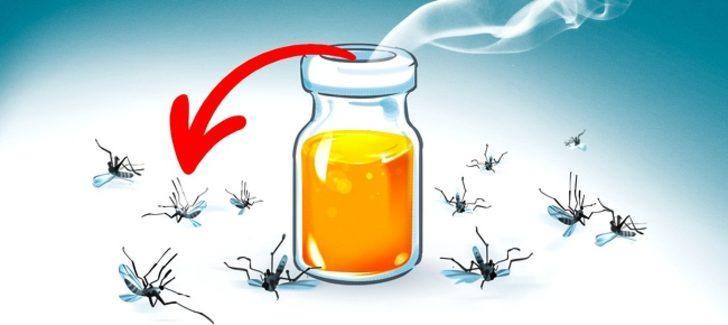 Bu doğal çözümler sivrisineklerden kurtulmanızı sağlayacak